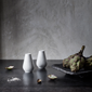 rhombe-salt-and-pepper-set-h7-white-porcelain-1-set-rhombe
