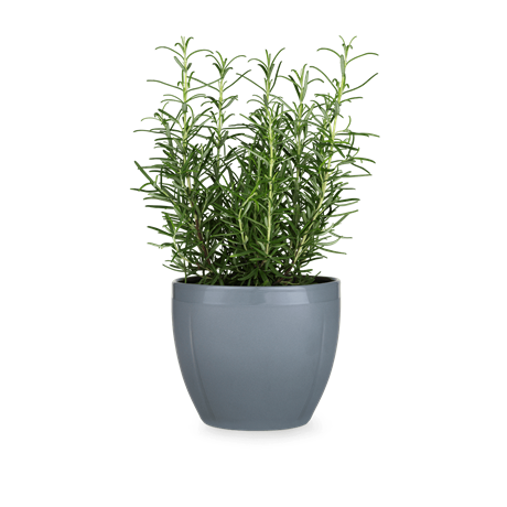 gc-flowerpot-oe16-cm-grey-grand-cru