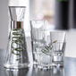 gc-set-water-carafe-and-tumbler-2-pcs-clear-grand-cru