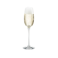 Fontaine Champagneglas 21 cl