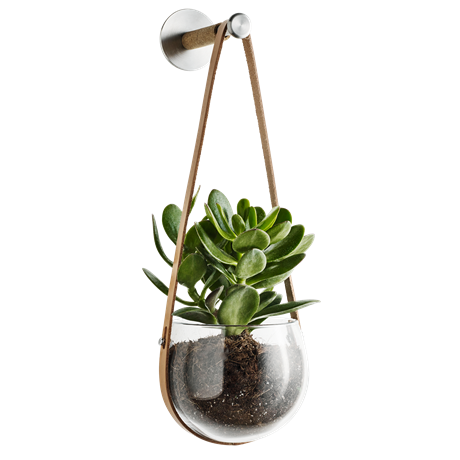 dwl-jar-clear-oe14-cm-design-with-light
