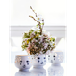 flowerhead-tealight-holder-white-oe6-cm-2-pcs-flowerhead