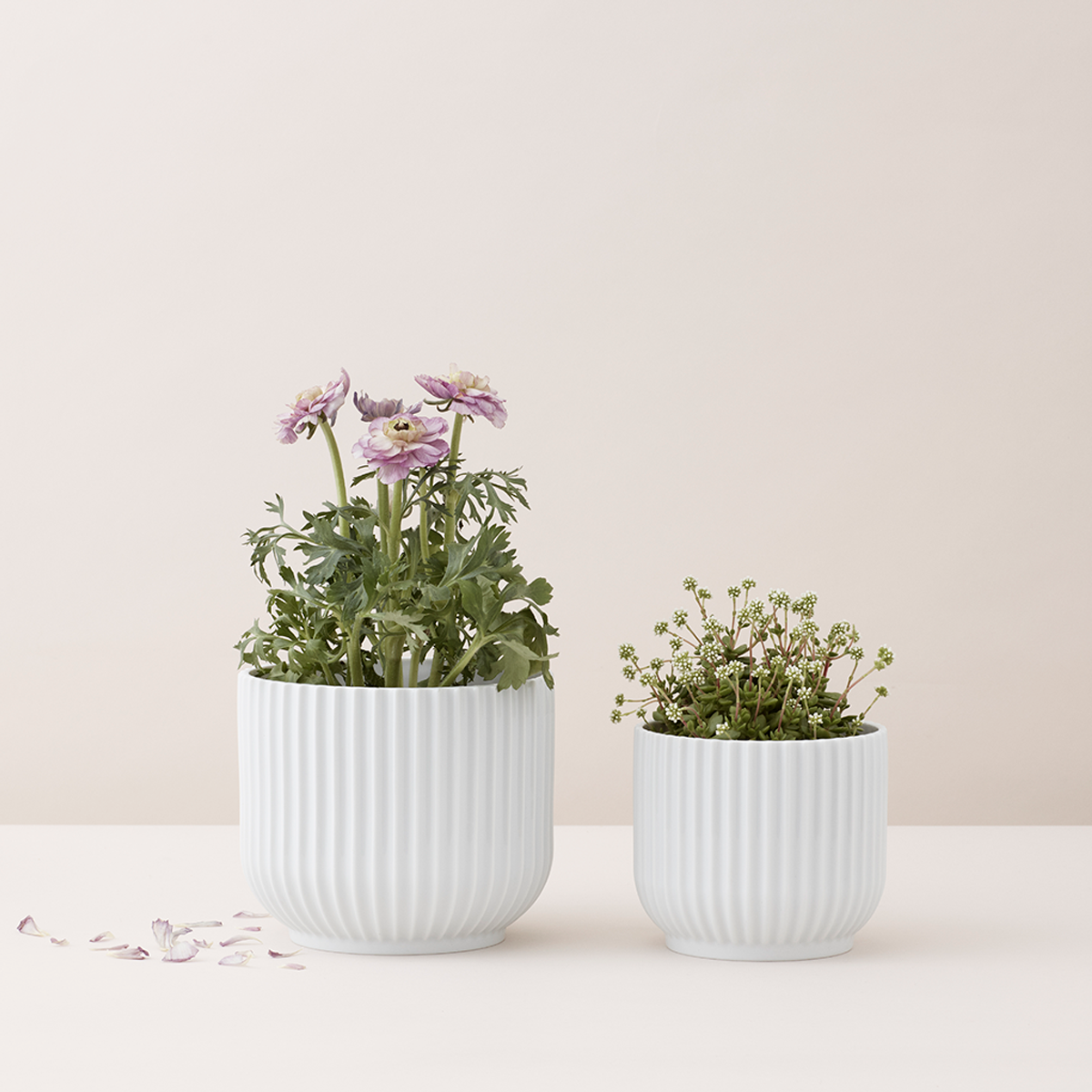 Lyngby Porcelæn : small flower pot - startupinsights.org
