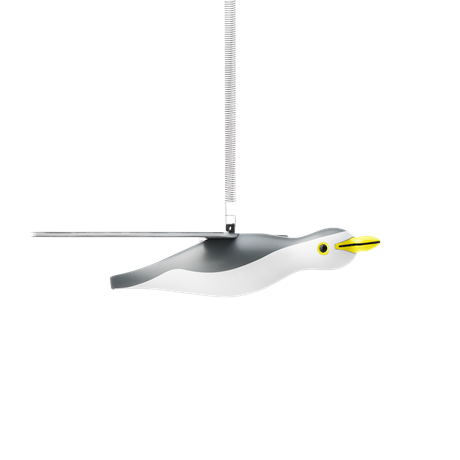 seagull-large-grey-white-
